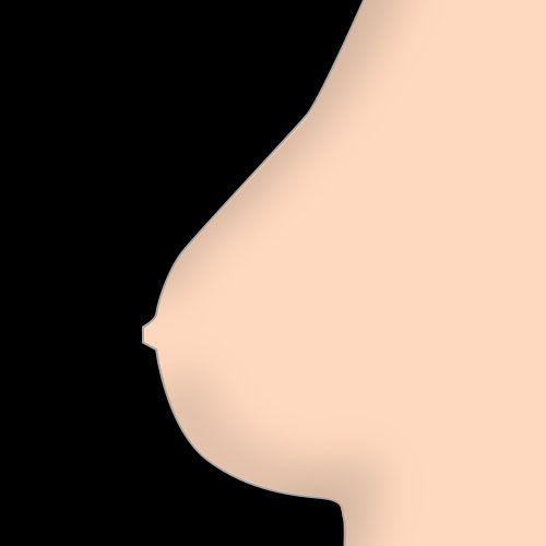 feste Brüste